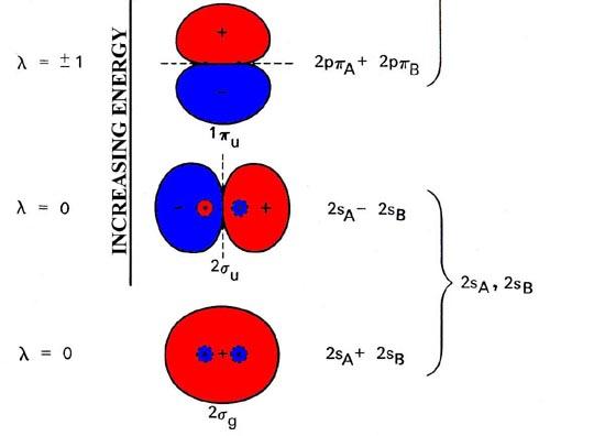 Molecular Orbitals Molecular Orbitals For Homonuclear Diatomics